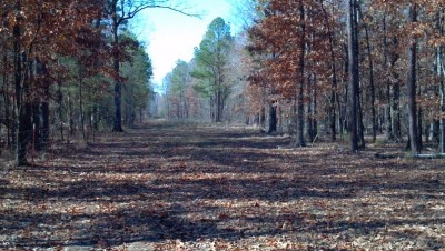 Fouke Home, AR Real Estate Listing
