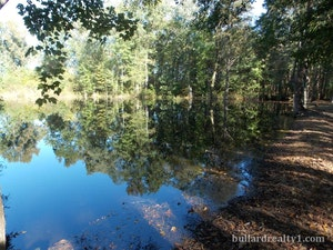Dillon  Home, SC Real Estate Listing