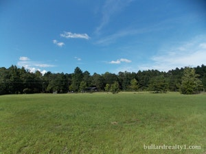 Blenheim Home, SC Real Estate Listing